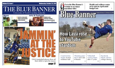 Figure 4: The Blue Banner website traffic increased in both fall 2010 and                        spring 2011 as a result of the Western North Carolina Local Information Cooperative.