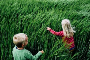 Europe, Denmark, Sønder Vissing: On the way back from shopping in the next town, Karina pulls over at the side of the road and starts to play with the kids in the green cornfield. Kristian is more than one year younger than his sister but they are about the same stage of development.